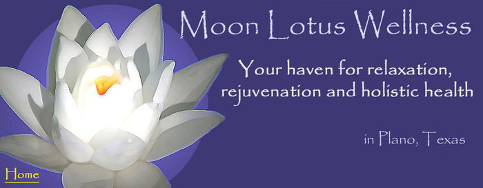 Moon lotus banner-large
