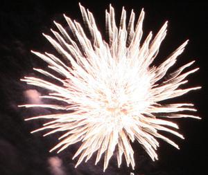 Fireworks_crop